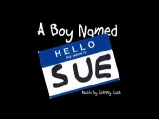 a-boy-named-sue-new-perspective